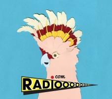 radioooo