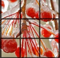 instagrids-ios-grid.jpg